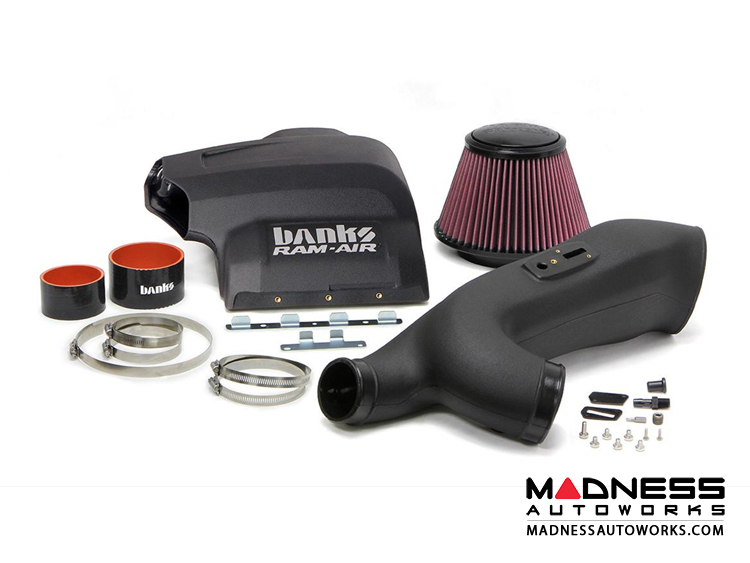 Ford F-150 3.5L Eco Boost Ram Air Intake Kit by Banks Power - Dry Filter