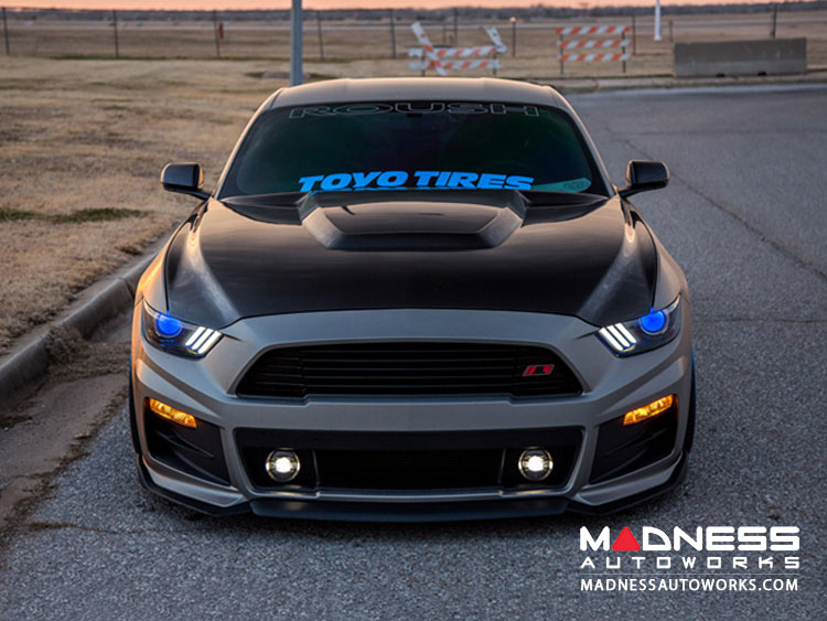 Ford Mustang Hood by Anderson Composties - Carbon Fiber - GT350 Style