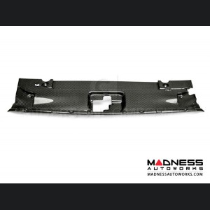 Ford Mustang Radiator Cover by Anderson Composites - Carbon Fiber